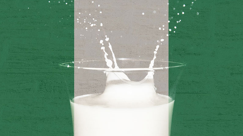 LOCAL PRODUCTION OF FRESH MILK IN NIGERIA: FRIESLAND/CAMPINA WAMCO SIGNS AGREEMENT WITH IFDC
